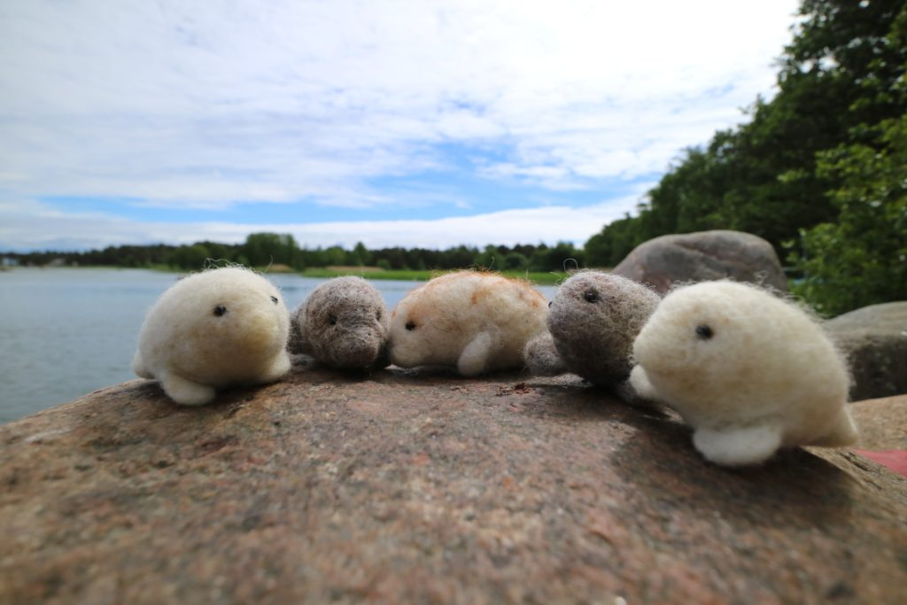 Felted seals