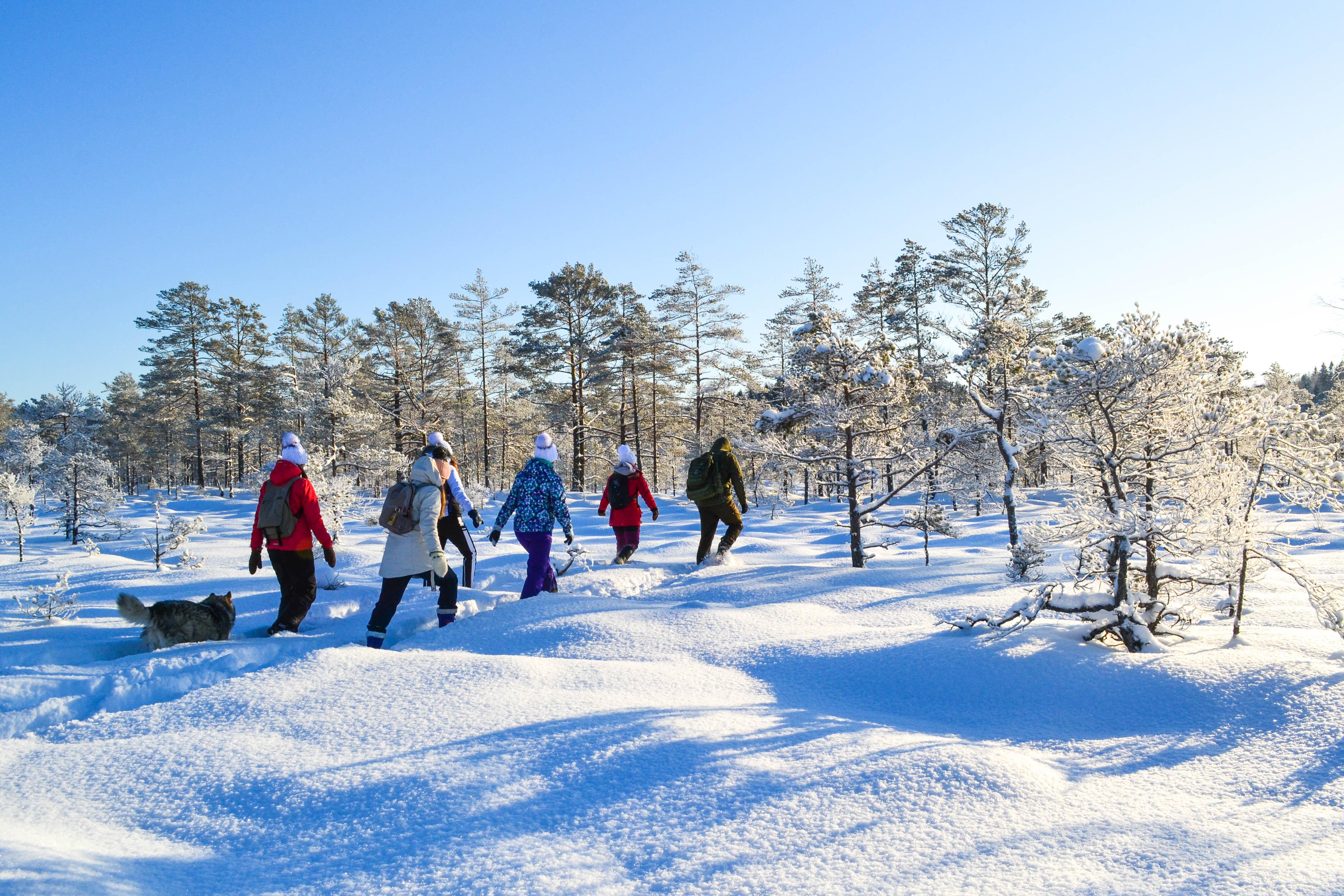 ©J. Leppmets. Eesti rabadesse saab matkale minna nii suvel kui talvel.