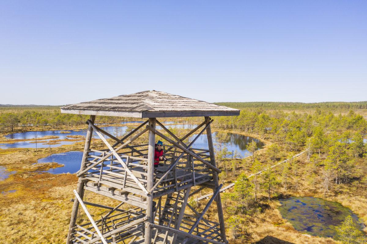 ©A. Teede. Kõnnu Suursoos asuvast vaatetornist näeme kõrgelt ilusat Eesti maastikku