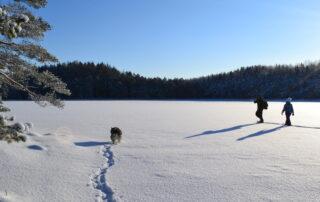 ettevõtte talvepäevad põhja-eestis